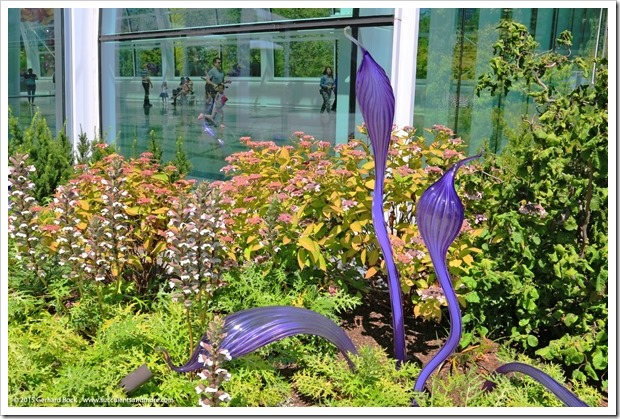 150626_Seattle_ChihulyGardenGlass_0055