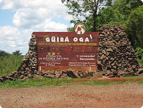 guira-oga-animales-en-la-selva-misionera