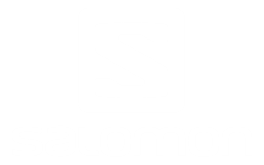 Salomon_Logo_White_400px_thumb[1]