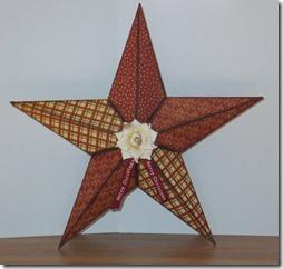 estrella 1tridimensional  (2)