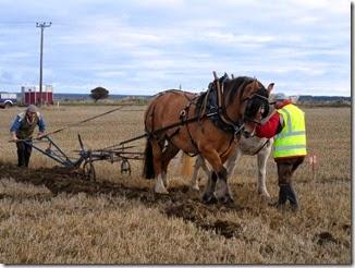 Ploughing Bill Fernie