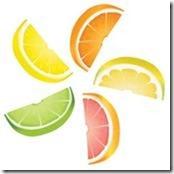 citrus-clipart-k6437655