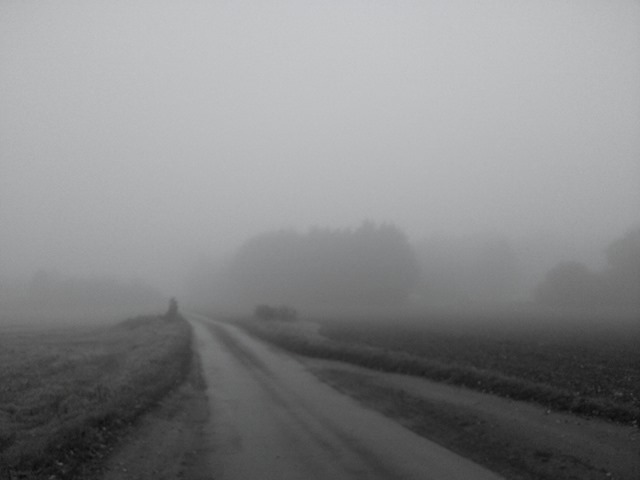 Foggy roads