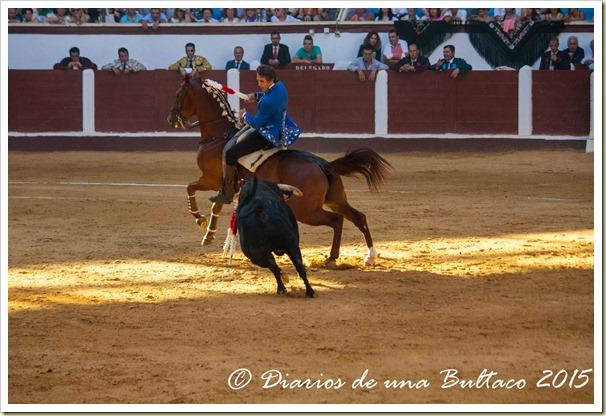 Toros Feria 2015-9906