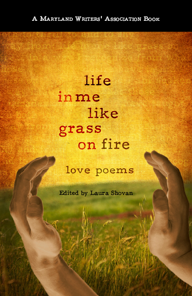 our life in poetry selected essays and reviews