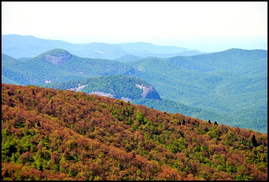 04e4 - Mt. Pisgah Summit View - Looking Glass Rock
