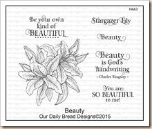 Beauty H663