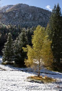 16-Val Chiavenna_034