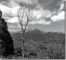 Garden of the gods CO Sprngs 042 B&W