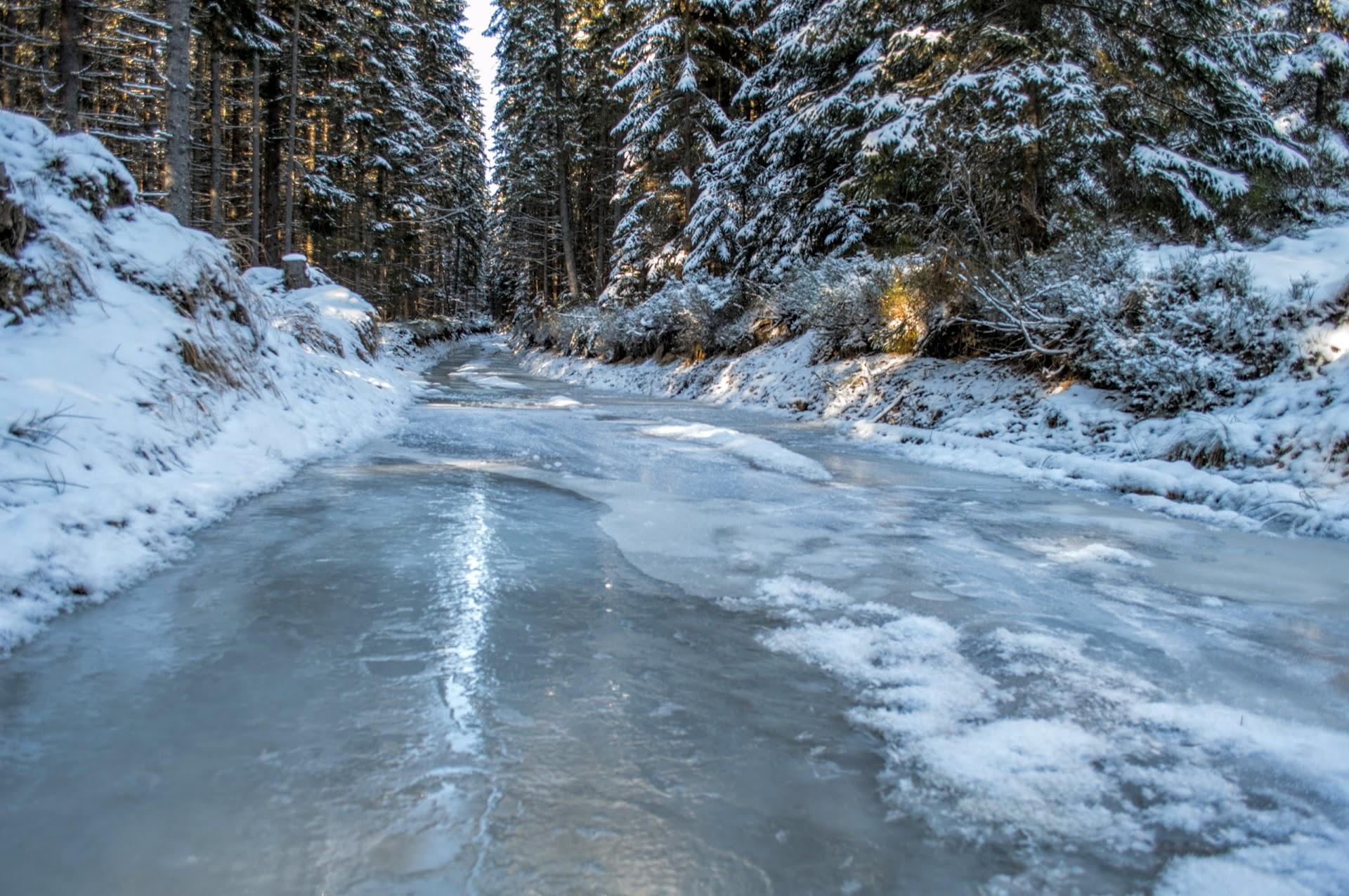 Замерзла Лісова дорога бля піднніжжя Аршиці