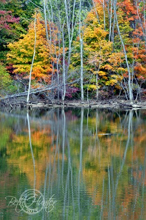 cr-fall-color-on-water