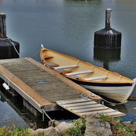rowboat in the harbor by Carolyn Taylor - Transportation Boats