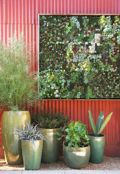 Cách làm chậu trồng cây treo tường - 197549