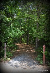 Trail from the Interpretive Center