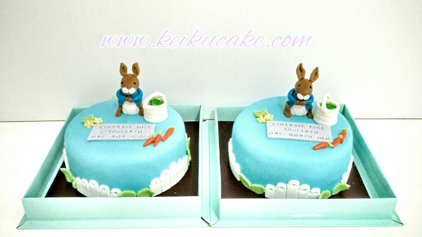 Keiku Cake Peter Rabbit Baby One Month Cake
