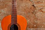 Guitarra y muralla árabe del s. XI. Viernes 30 de noviembre de 2012