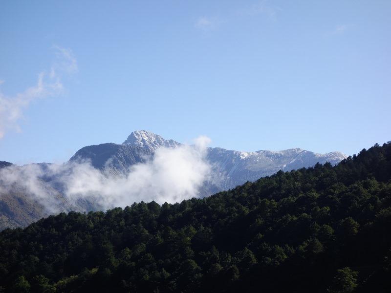 2013_1126-1129 鹿林山-1_274