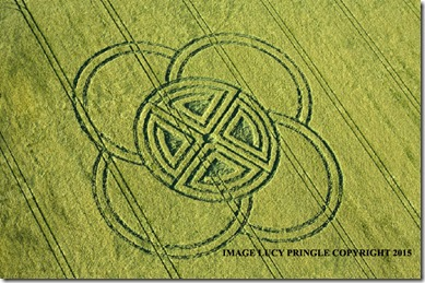 Fox-Ground-Down crop circles