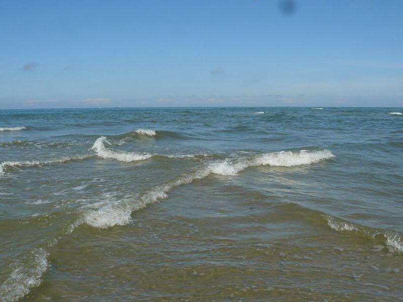 cross-swell-3