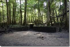 Dam remains-3