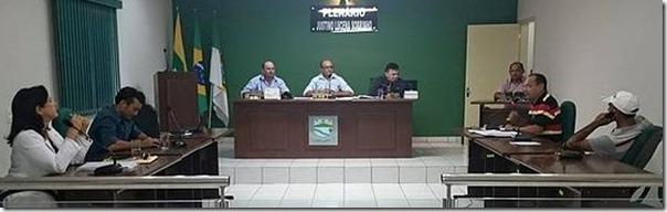 plenario_camara_2015