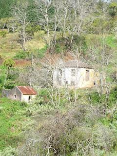 Le long de la levada da Serra