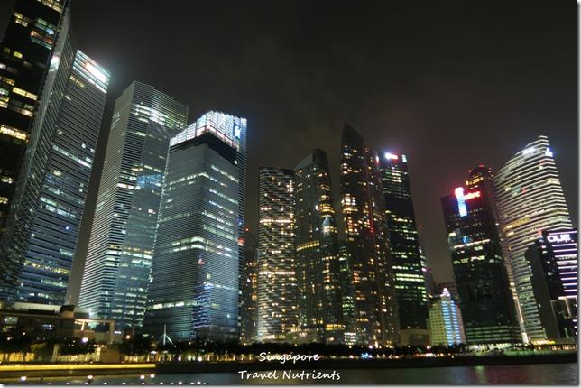 新加坡河岸 老巴剎 (7)