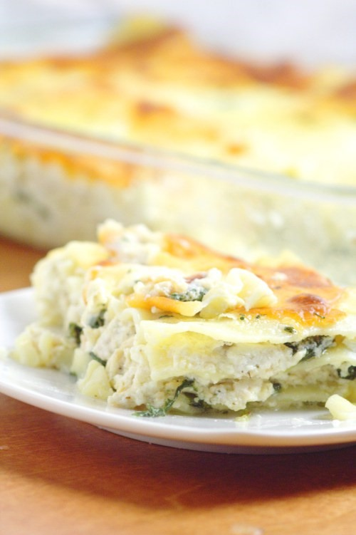 Chicken-Alfredo-Lasagna-3
