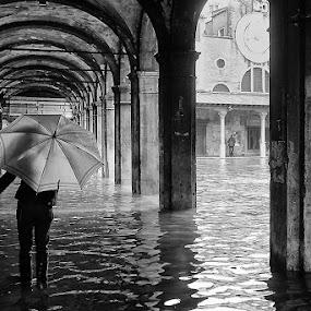 Venice flooded by Matteo Chinellato - City,  Street & Park  Street Scenes ( venezia, water, venice, italy, city )