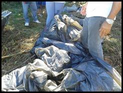 Apenas Uma Amostra do Lixo Retirado da Lagoa de Juturnaíba