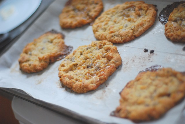 Momofuku Cornflake Chocolate Chip Marshmallow Cookies