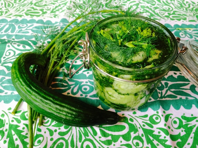 Dill pickled cucumbers