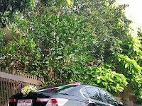 Mobil Pengantin Toyota Camry Jogja