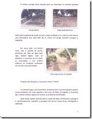 ReportagemBiogeográfica-021