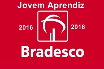 programa-jovem-aprendiz-2016-bradesco-www.meuscartoes.com