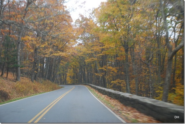 10-23-15 A Skyline Drive Shenandoah NP (61)