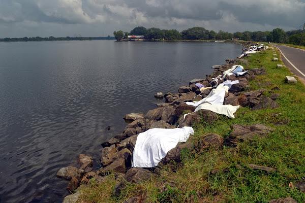 Сушка белья на камнях возле озера, Полоннарува, Шри Ланка