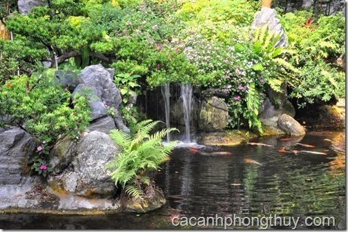 Hồ koi sân vườn mô phỏng thác nước trong tự nhiên