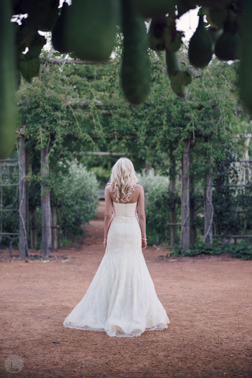 Paige and Ty wedding Babylonstoren South Africa shot by dna photographers 337.jpg