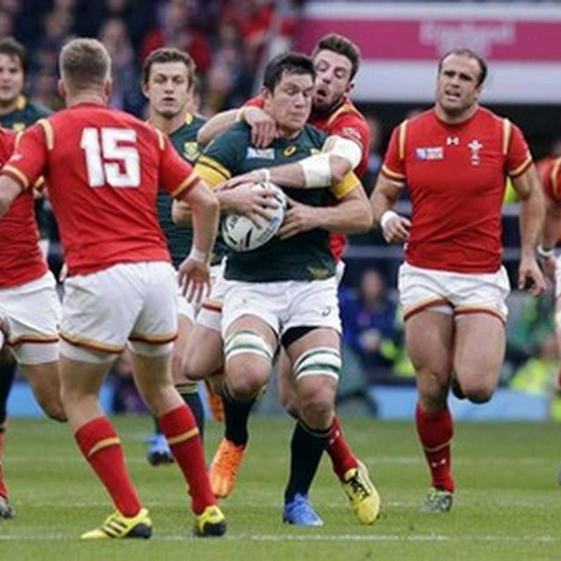 Sudáfrica superó a Gales 23 a 19 y se medirá con Nueva Zelanda en semifinales.