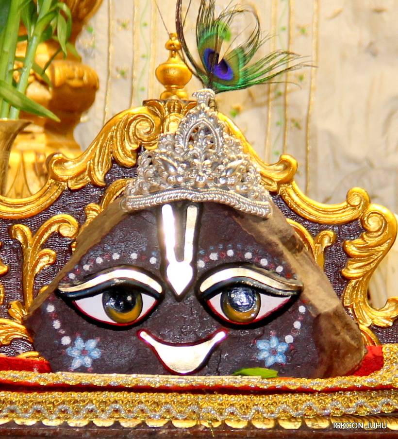 ISKCON Juhu Mangal Deity Darshan 21 Jan 16 (23)
