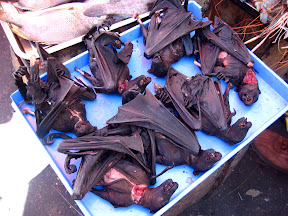My first time to see bats on sell at the market - on sell for dinner!  :-p