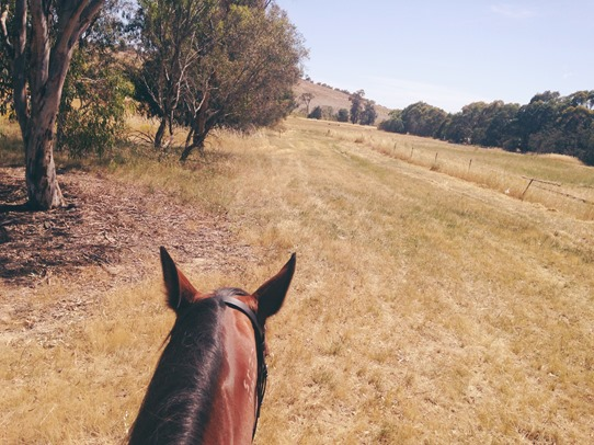 Goodbye to our old home... | A Riding Habit