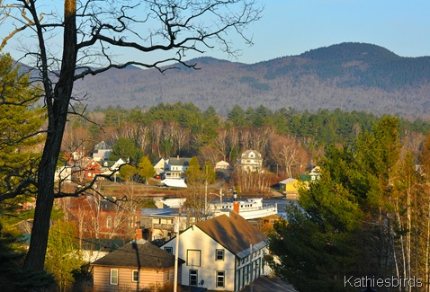 16. view of Greenville from porch-kab