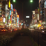Yasukuni dori street in Shinjuku in Shinjuku, Tokyo, Japan