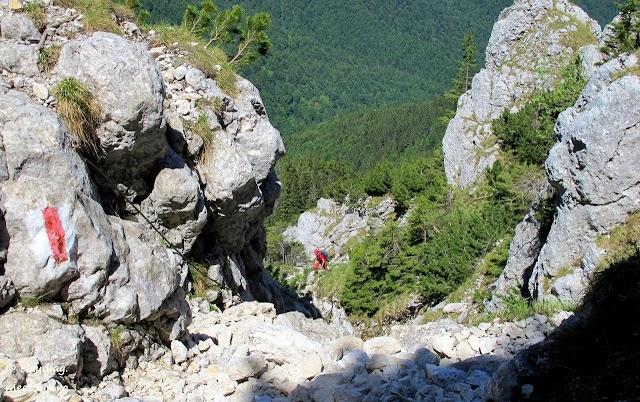 Piatra-Craiului-Sudica-5017-rw.jpg