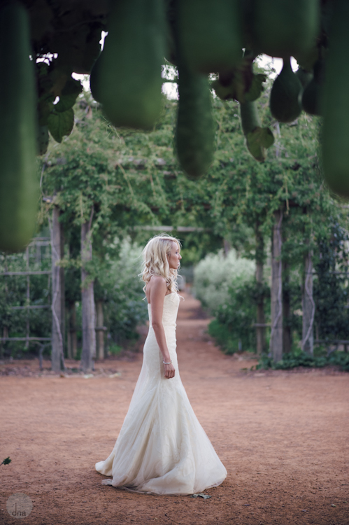 Paige and Ty wedding Babylonstoren South Africa shot by dna photographers 335.jpg