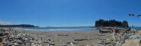Ocean View, La Push Washington