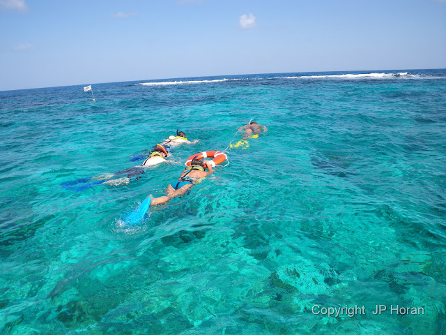 Buck Island Reef - IMGP3670.JPG