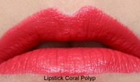 CoralPolyp23